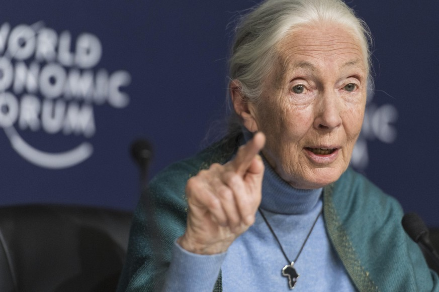 Jane Goodall, English primatologist and anthropologist, addresses a press conference during the 50th annual meeting of the World Economic Forum, WEF, in Davos, Switzerland, Wednesday, January 22, 2020. The meeting brings together entrepreneurs, scientists, corporate and political leaders in Davos from January 21 to 24. (KEYSTONE/Alessandro della Valle) |