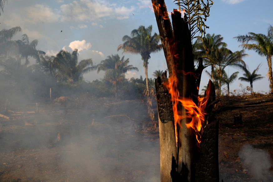 A tract of Amazon jungle is seen burning as it is being cleared by loggers and farmers in Iranduba, Amazonas state, Brazil August 20, 2019. REUTERS/Bruno Kelly